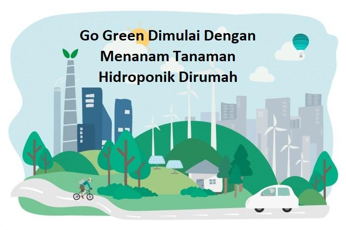 Go Green Dimulai Dengan Menanam Tanaman Hidroponik Dirumah