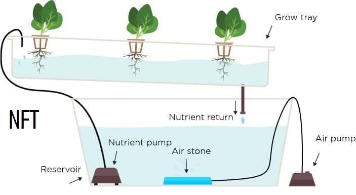 Nutrient Film Technique (NFT)