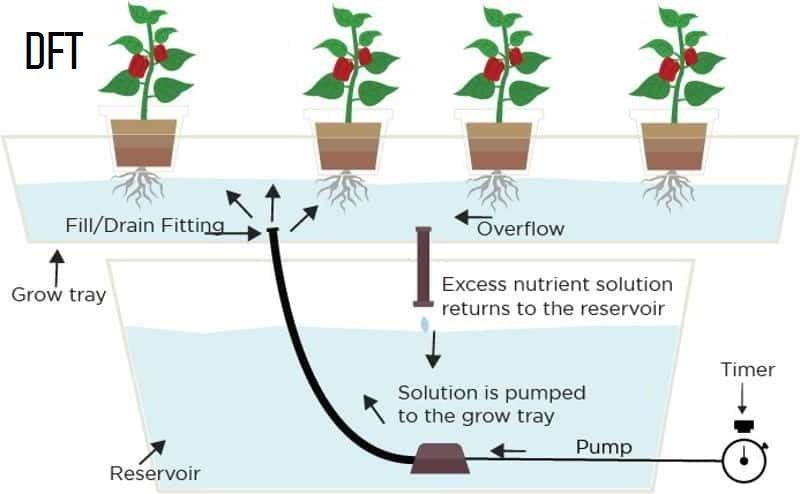 Deep Flow System (DFT)