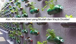 Alat Hidroponik Sawi