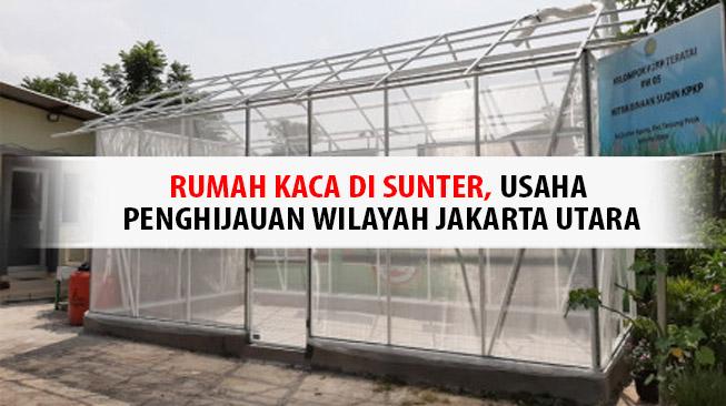 Rumah Kaca di Sunter, Usaha Penghijauan Wilayah Jakarta Utara